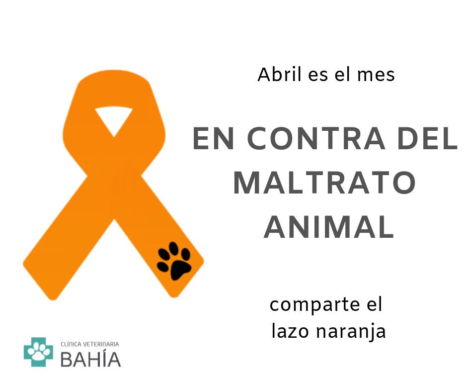 mes contra el maltrato animal